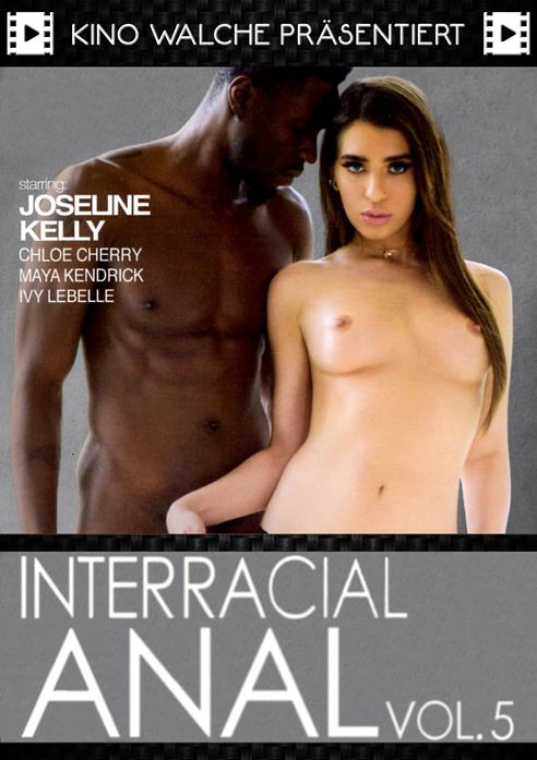 Interracial Anal 5